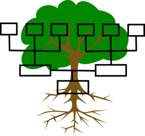 Carty Family Tree